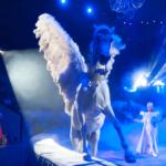 Итальянские циркачи приглашают на представление